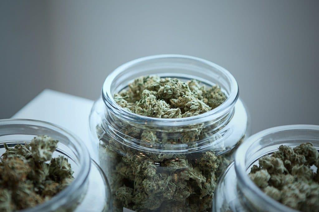 marché cannabis cbd