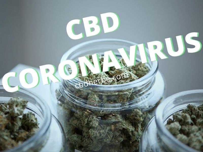 CBD CORONAVIRUS