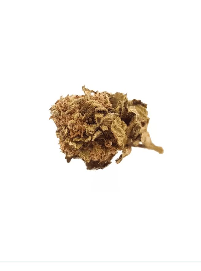 fleur cbd Orange Bud La ferme du CBD